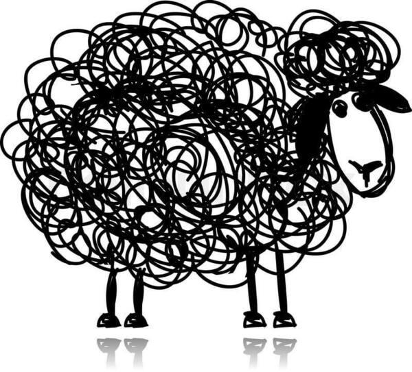 ateliersenpermaculture_mouton.jpg