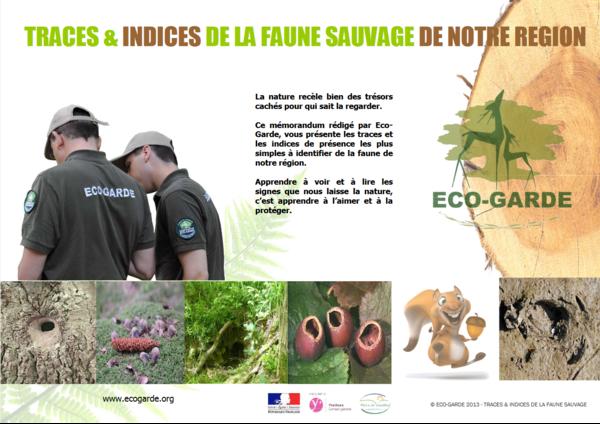 indicesettracesdepresencedelafaunesauva_screenshot_2021-02-10-indices-traces-de-presence-de-la-faune-de-notre-region-2013-compresse-traces_indices_v2-pdf.png