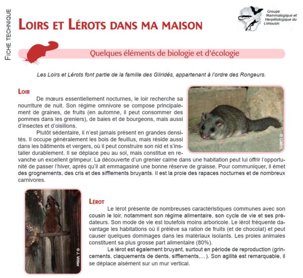 loirsetl2rotsdansmamaison_screenshot_2019-12-23-ft_loirs_lrots_red-pdf.png