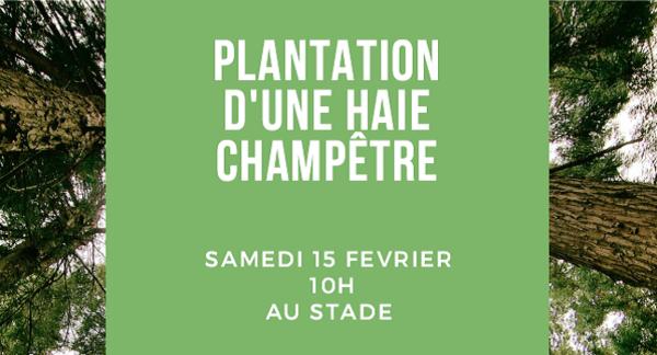 participezadesplantations_nsn-plantation2.png