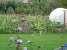 canlersolivier_oliviercanlers_jardin.jpg