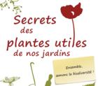 recueildesplantessauvagesutilesdenosjard_image1.png
