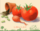 jardinonsaunaturelpratiquesecologiques_screenshot_2019-07-04-livret-jardinons-au-naturel-pdf.png